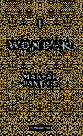 I Wonder by Marian Bantjes - Hardcover - Random House :  illuminated artist books book