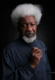 Wole Soyinka - You Must Set Forth at Dawn