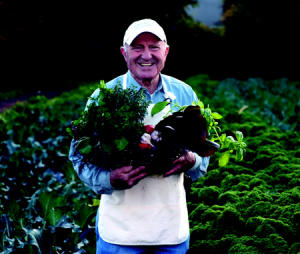 Sal Gilbertie - Small-Plot, High-Yield Gardening