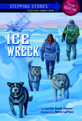 Ice Wreck Cover