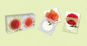 Roses Gift Enclosures Cover