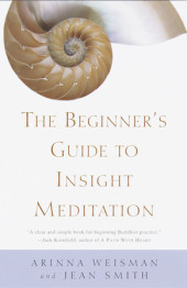 The Beginner's Guide to Insight Meditation Cover