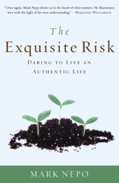 The Exquisite Risk Cover