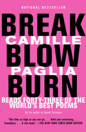Break, Blow, Burn Cover