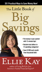 The Little Book of Big Savings Cover