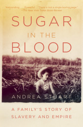 Sugar in the Blood Cover