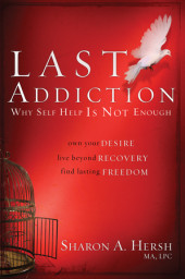 The Last Addiction Cover
