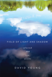 Field of Light and Shadow Cover