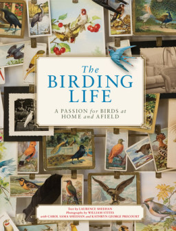 The Birding Life