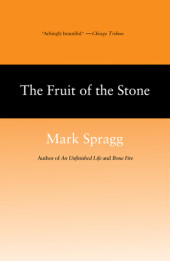 The Fruit of Stone Cover