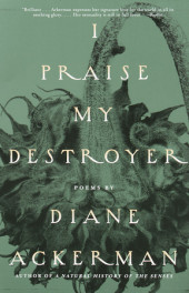 I Praise My Destroyer Cover
