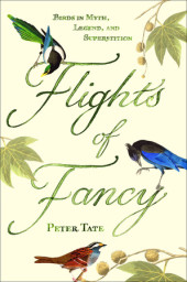 Flights of Fancy Cover