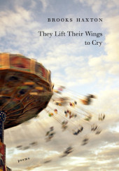 They Lift Their Wings to Cry