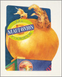Maui Onion Cookbook