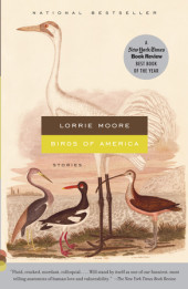 Birds of America Cover