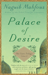 Palace of Desire Cover