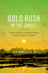 Gold Rush in the Jungle Cover