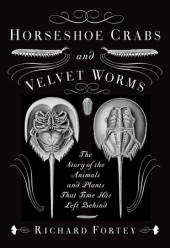 Horseshoe Crabs and Velvet Worms Cover