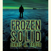 Frozen Solid: A Novel Cover