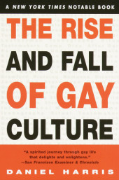 The Rise and Fall of Gay Culture Cover