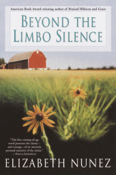 Beyond The Limbo Silence Cover