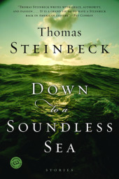 Down to a Soundless Sea Cover