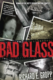 Interview with Richard E. Gropp, Author, 'Bad Glass'
