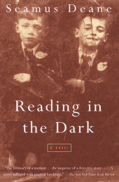 Reading in the Dark Cover