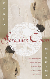 Forbidden Colors Cover