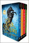 Black Stallion Adventure Set