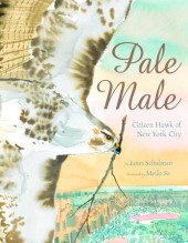 Pale Male:  Citizen Hawk of New York City Cover