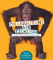 Orangutans are Ticklish