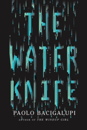 'Water Knife' Author Paolo Bacigalupi Talks About 'Cli-Fi' In Public Radio Interview