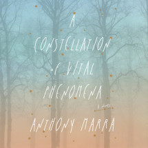 A Constellation of Vital Phenomena Cover