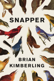 Snapper Cover