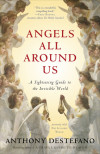 Angels All Around Us - Anthony DeStefano