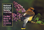 National Audubon Society Pocket Guide to Familiar Birds: Eastern Region Cover