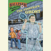 Ballpark Mysteries #2: The Pinstripe Ghost Cover