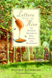 Letters from the Hive Cover