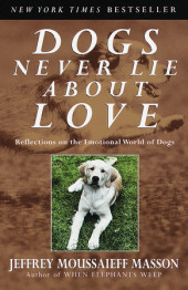 Dogs Never Lie About Love Cover