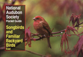 NAS Pocket Guide to Songbirds and Familiar Backyard Birds: Eastern Region Cover