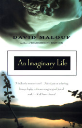 An Imaginary Life Cover