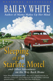 Sleeping at the Starlite Motel Cover