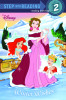 Winter Wishes (Disney Princess)