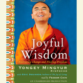 Joyful Wisdom Cover