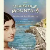 The Invisible Mountain Cover