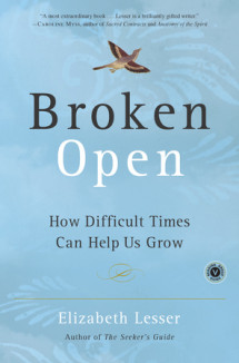 Broken Open Cover