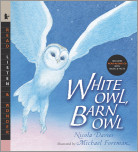 White Owl, Barn Owl with Audio