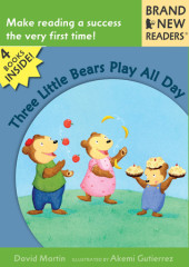Three Little Bears Play All Day Cover