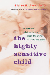 The Highly Sensitive Child Cover